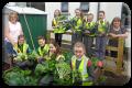Garden committee May 17