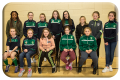 U11 and 12 Girls Football