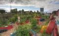 Community/School garden