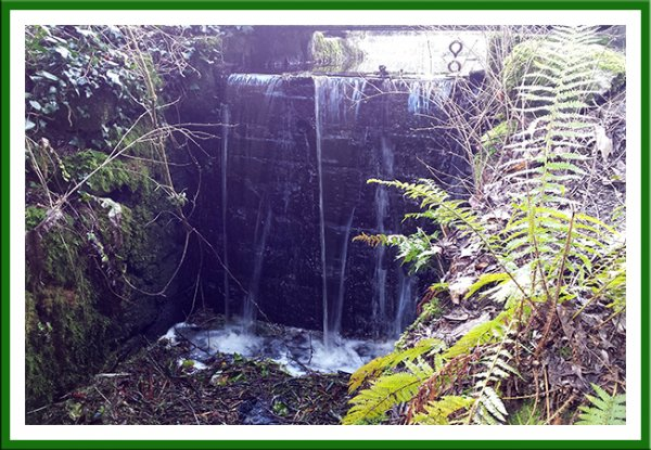 Waterfall at Altamont