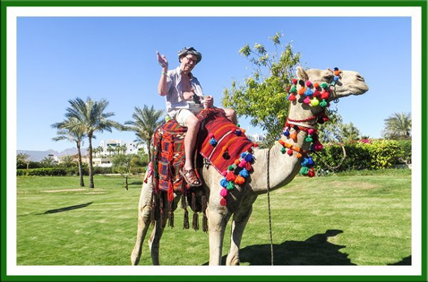 Camel problems