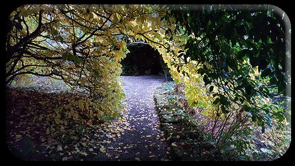 November in Altamont
