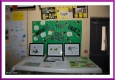 Biodiversity Display
